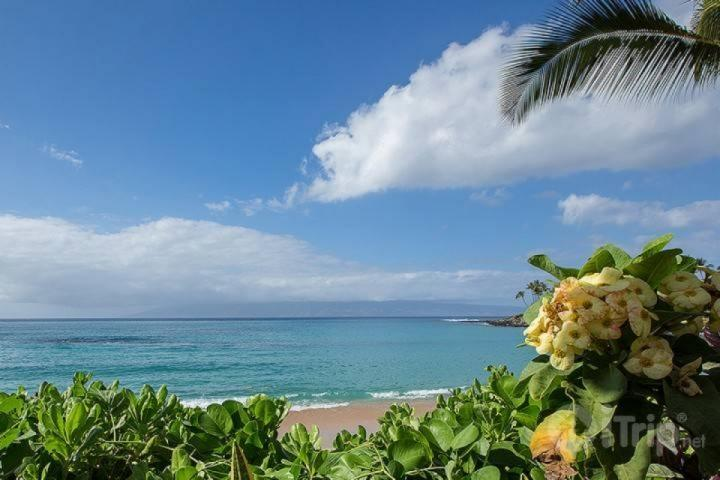 Our townhouse is a short walk to beautiful Napili Bay. - Walk to Napili Bay - Beautiful 2 bedroom / 1 bath apartment! - Napili-Honokowai - rentals