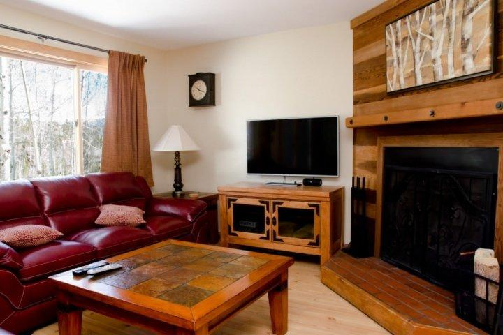 Cozy Living Area with Beautiful Views And Wood Burning Fireplace - SKI SEASON OPENS NOV 4th! Dog Friendly With Open Views of Back Country/Trails! Book NOW For Holidays - Silverthorne - rentals