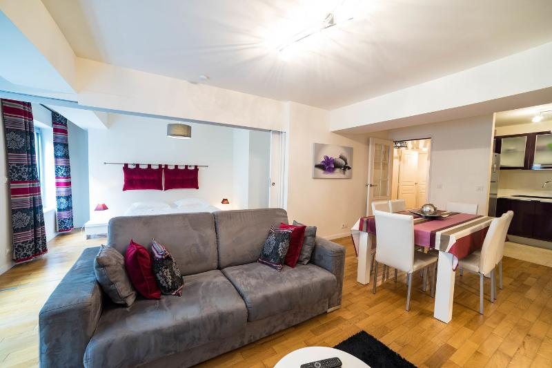 Living Room - Porte du Temple:Comfortable one bedroom in Marais - Paris - rentals