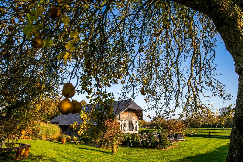 La Vie de Cocagne, fall view from the pear tree - La Vie de Cocagne, Bonnebosq, Self catering - Deauville - rentals