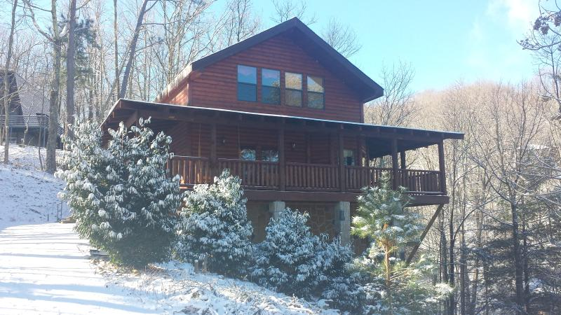 Bring your dog Few miles from town/National Park - Image 1 - Gatlinburg - rentals