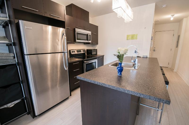 Stainless steel kitchen with microwave, oven, dishwasher, fridge, freezer, toaster and more. - Studio near Concordia University's Loyola campus - Montreal - rentals