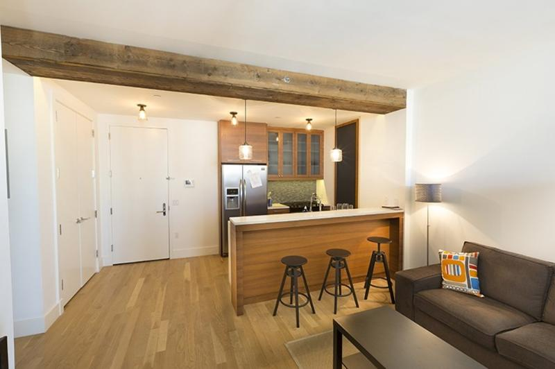REMARKABLE 2 BEDROOM APARTMENT IN WILLIAMSBURG - Image 1 - New York City - rentals