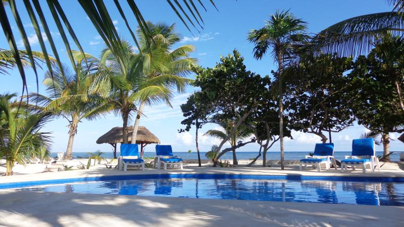 Pool with Beach view - Casa Tortuga, Beachfront 4bdrm Villa with pool - Soliman Bay - rentals