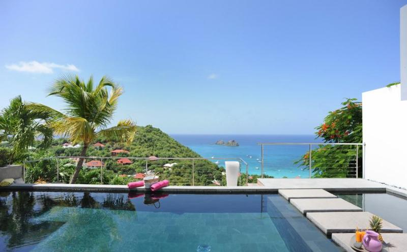 Casaprima - Ideal for Couples and Families, Beautiful Pool and Beach - Image 1 - Anse des Flamands - rentals