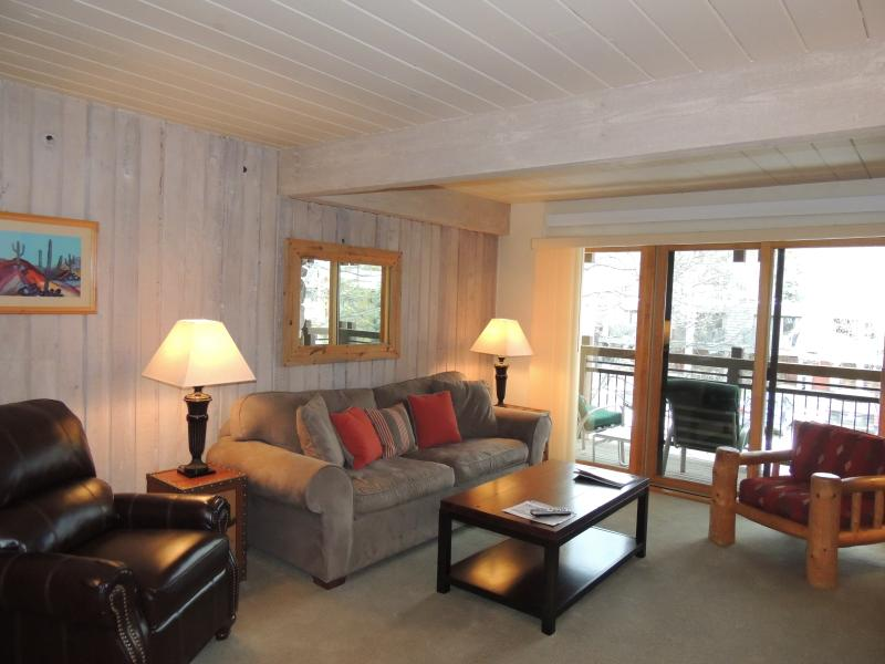 Living room - Lift One - 204 - 1B/1B - Aspen - rentals