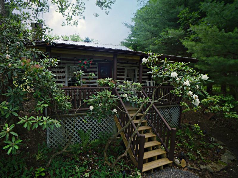 Welcome to Olde Deep Creek - An Original Log Cabin! - Olde Deep Creek - 3rd Night Free! - Oakland - rentals