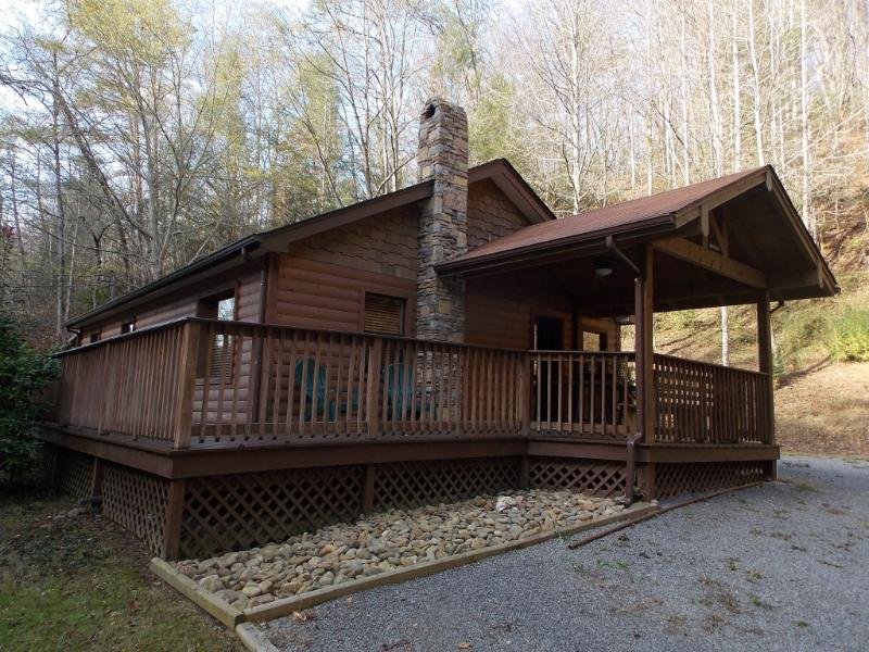 BEARLY RUSTIC - Image 1 - Tennessee - rentals