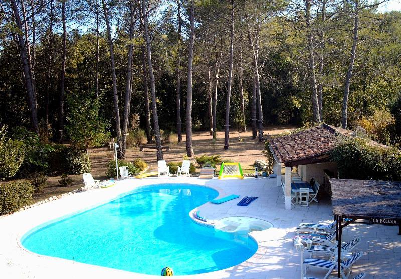 Villa Raphael - Image 1 - Fayence - rentals