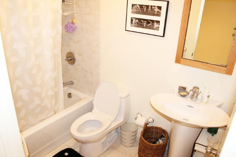 Beautiful 1 Bedroom, 1 Bathroom Unit - Furnished, Utilities Included - Image 1 - San Francisco - rentals