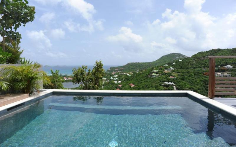 Adamas - Ideal for Couples and Families, Beautiful Pool and Beach - Image 1 - Saint Jean - rentals