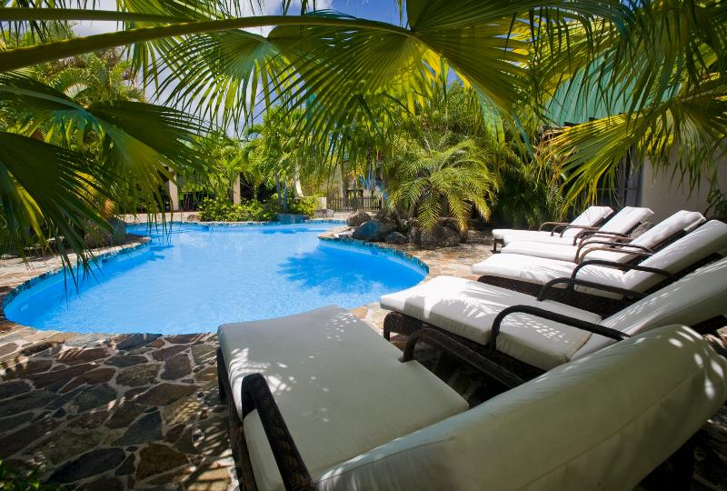 Allamanda Estate - Ideal for Couples and Families, Beautiful Pool and Beach - Image 1 - Tortola - rentals