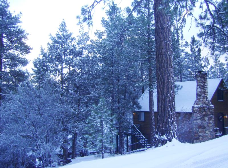 Romantic Cabin in the Woods, with Hot Tub, Fireplace, Netflix. - Storybook Cabin*HOT TUB*FIREPLACE~2.24-2.26-$80.nt - Big Bear Lake - rentals