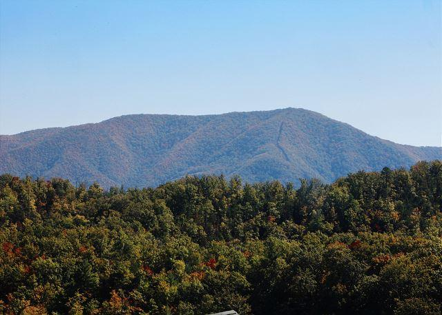 View from cabin deck. - Perfect for Reunions/Retreats W/ Room for 29 , Stadium Style Theater, Dogs OK - Sevierville - rentals