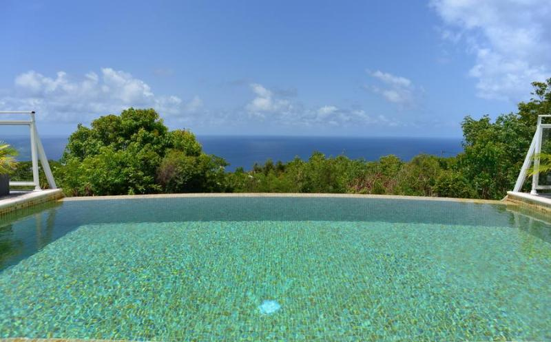 Private Luxury Villa with an Ocean View - Image 1 - Gouverneur - rentals