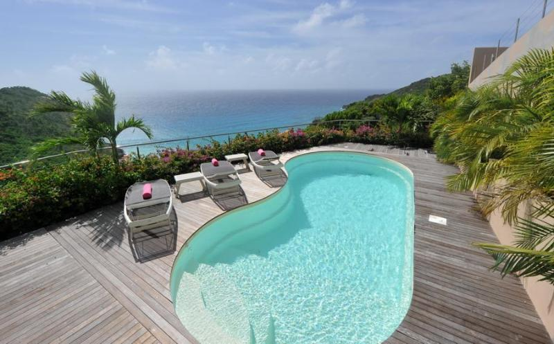 Gouverneur Cliff - Ideal for Couples and Families, Beautiful Pool and Beach - Image 1 - Gouverneur - rentals