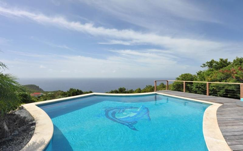Grand Large - Ideal for Couples and Families, Beautiful Pool and Beach - Image 1 - Gouverneur - rentals