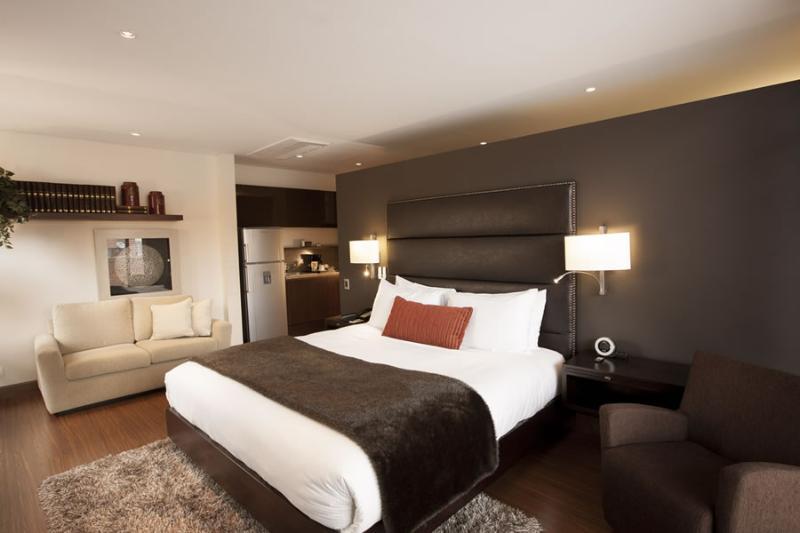 Shiny 1 Bedroom Apartment in La Cabrera - Image 1 - Bogota - rentals