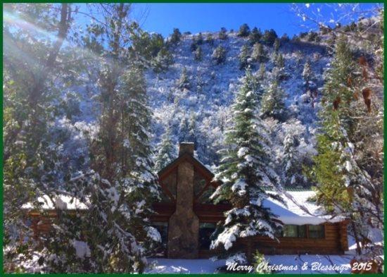 Winter scene - Golden Bear Log Cabin - Glenwood Springs, Colorado - Glenwood Springs - rentals