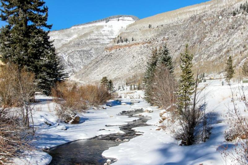 Cozy and modern condo right on the free bus route to Vail! - Image 1 - Vail - rentals