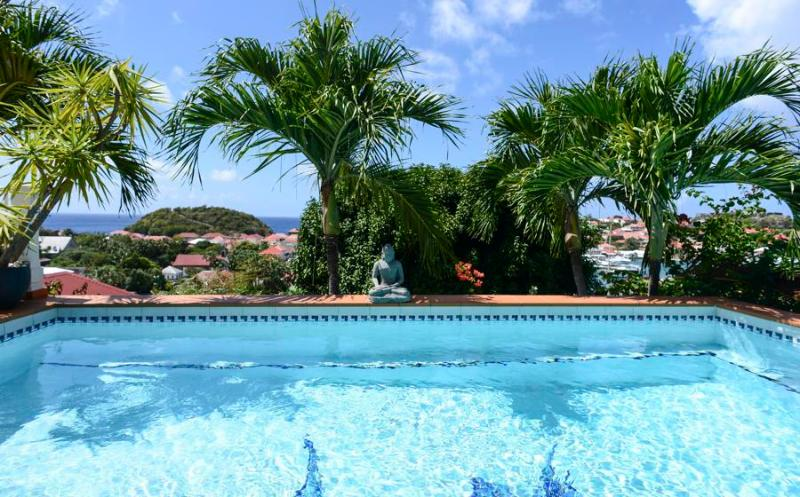 Le Marlin - Ideal for Couples and Families, Beautiful Pool and Beach - Image 1 - Gustavia - rentals