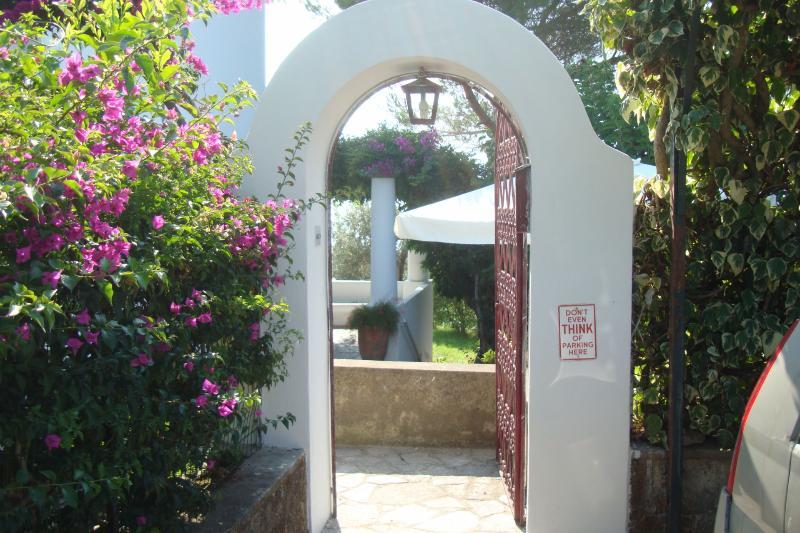 Villa Luna - Image 1 - Anacapri - rentals