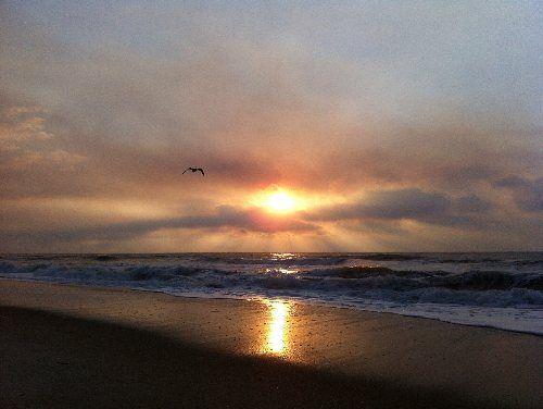 Sunrise - Pelican Watch 307 - Carolina Beach - rentals