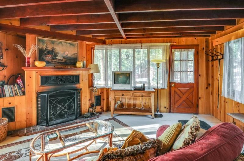 Lodge w/expansive patio & mountain views - Dogs are welcome! - Image 1 - Idyllwild - rentals