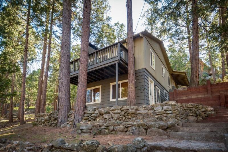 Quiet, warm cabin in wooded setting w/ foosball table and room for the family! - Image 1 - Idyllwild - rentals