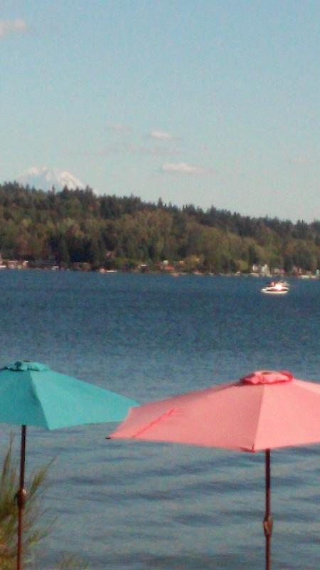 view from your patio - with Mt Rainier in background - Waterfront Lk Washington Mercr Island - Mercer Island - rentals