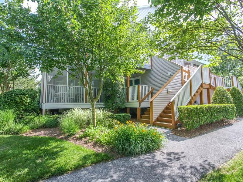 56067 Pinewood Drive - Image 1 - Cedar Neck - rentals