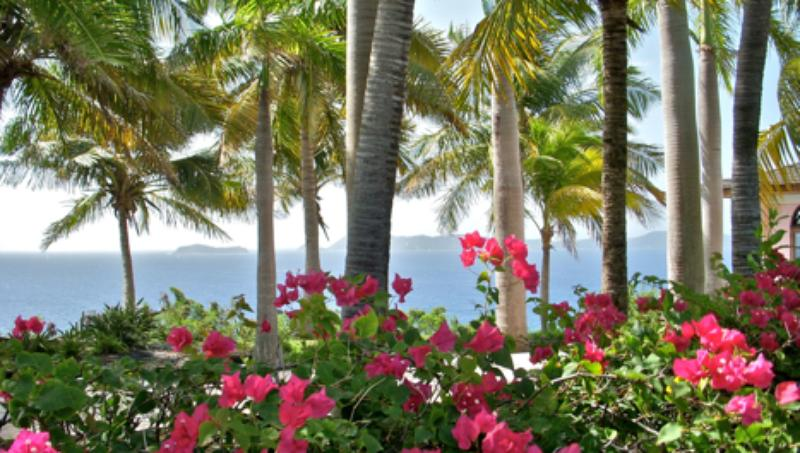 Rhumb House - Ideal for Couples and Families, Beautiful Pool and Beach - Image 1 - Tortola - rentals