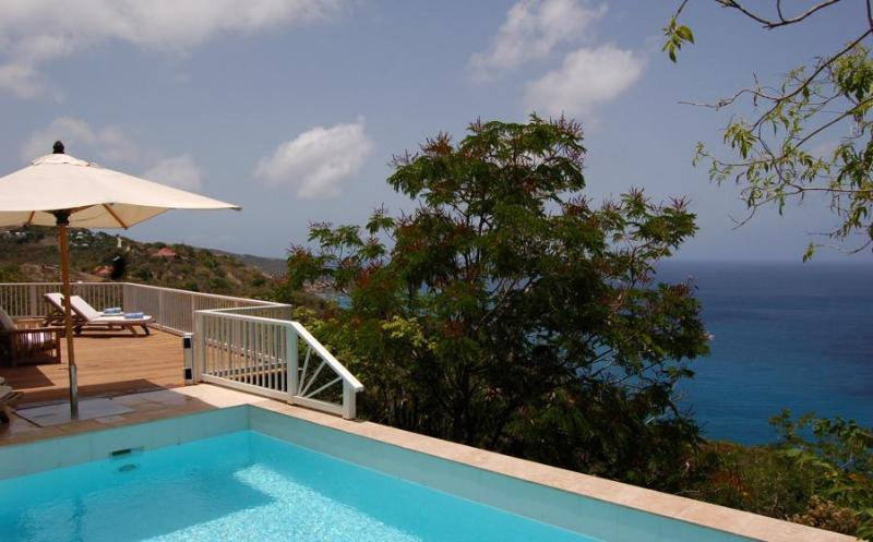 Seaview - Ideal for Couples and Families, Beautiful Pool and Beach - Image 1 - Anse des Flamands - rentals