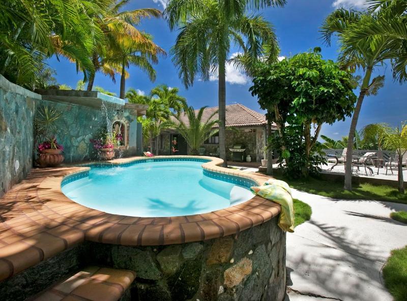 Pool - Rockworks | St. Thomas, USVI | 2 Bedrooms, 2 Baths - Saint Thomas - rentals