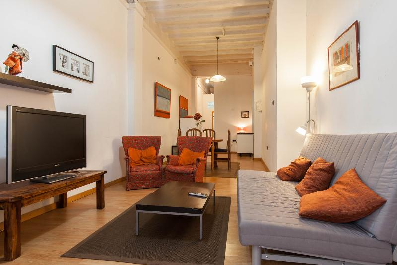 Living Room - Spacious Family Apartment with Patio: Centre - Barcelona - rentals