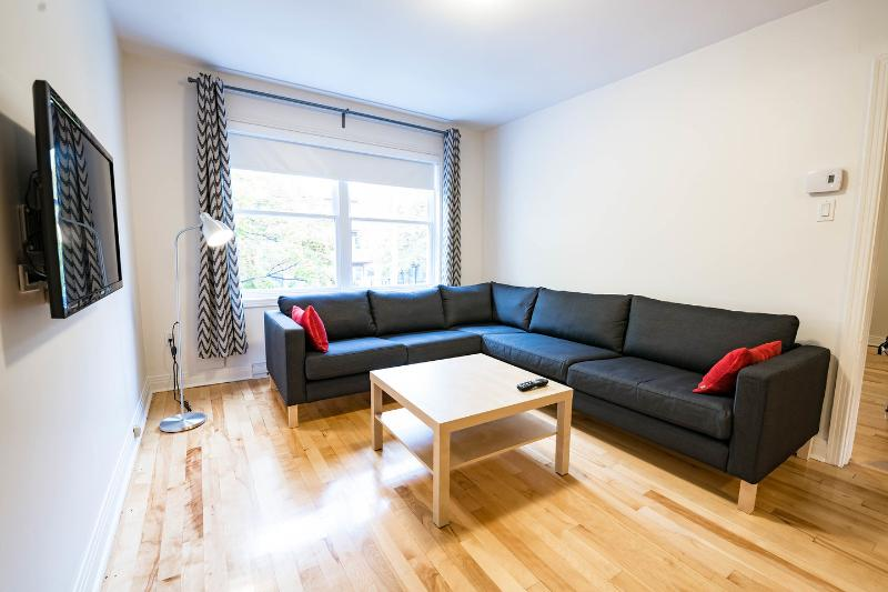 Living Room - For a memorable stay in Montreal... - Montreal - rentals