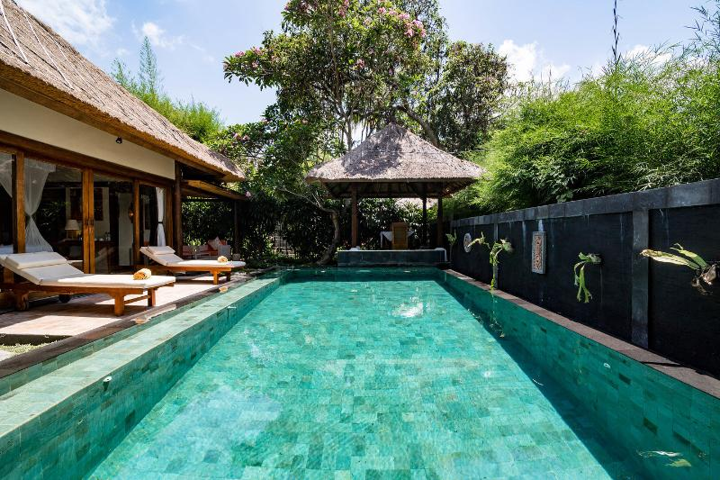 The Pool - Rustic Luxury: Villa Om - Ubud - rentals