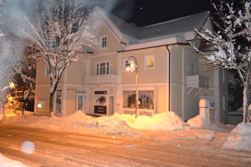 winter beauty - Apartment RUS Bled - Bled - rentals
