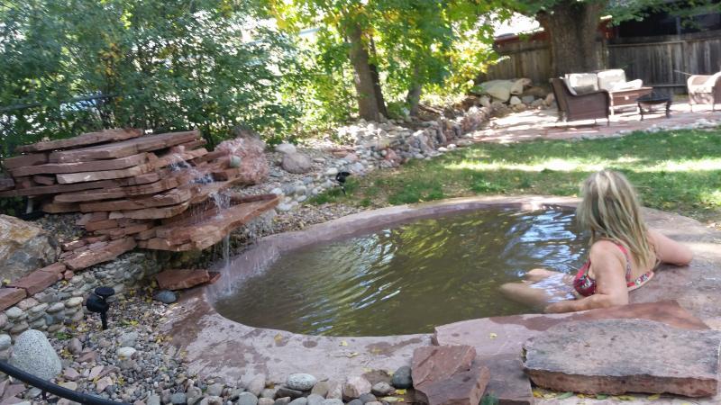 Hot Spring soaking pool - Spacious Broadmoor Property w/ Hot soaking pool! - Colorado Springs - rentals