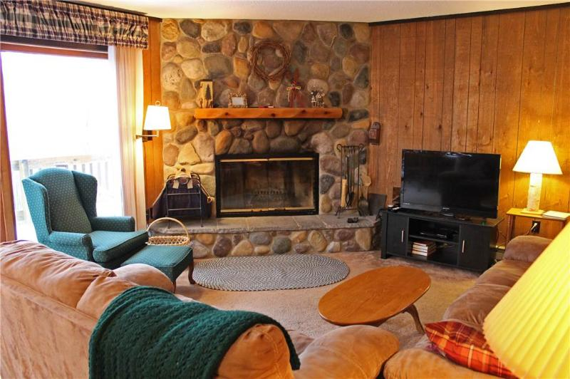 Located at Base of Powderhorn Mtn in the Western Upper Peninsula, A Delightful Home with Gorgeous Fieldstone Fireplace & Sauna - Image 1 - Bessemer - rentals