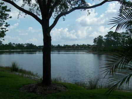 View - Turnberry in Pelican Sound - Estero - rentals