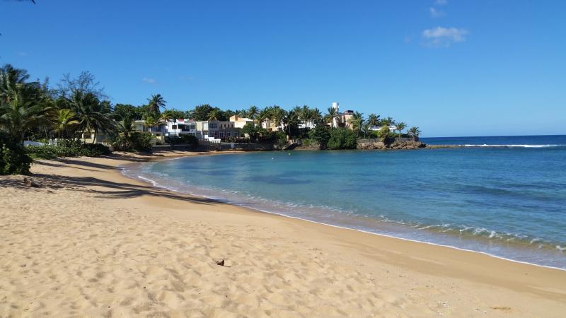 Dorado - Bre as - #1Exclusive Private Beach - Image 1 - Dorado - rentals
