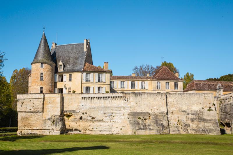 Chateau La Moinerie - Image 1 - Lamonzie-Montastruc - rentals