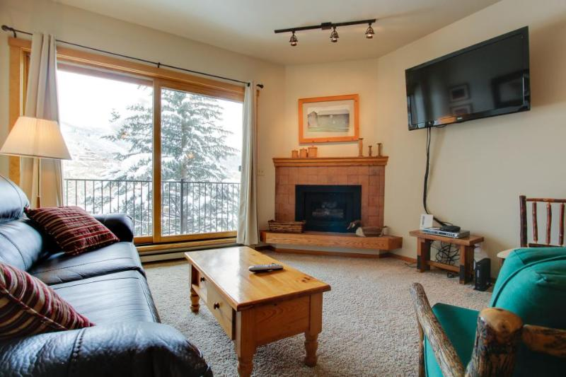 Affordable, cozy ski-in/ski-out condo with shared pool & hot tub! - Image 1 - Steamboat Springs - rentals