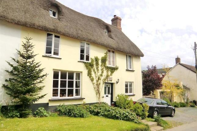 Thatched cottage with private parking - Dog friendly thatched cottage in Sheepwash - Sheepwash - rentals