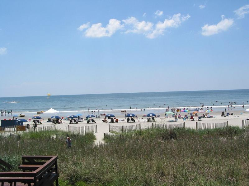 Across the street from the ocean - Newly Renovated Beach House; Great Rates! - North Myrtle Beach - rentals