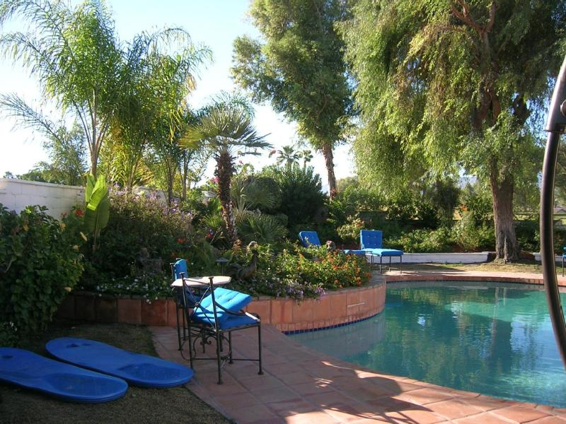 A Tropical Paradise In The Desert - Image 1 - Palm Desert - rentals
