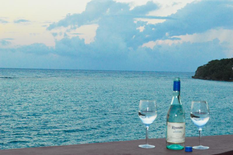 Relax, Reflect  and Unwind! - Oceanfront Villa, Court yard Pool, Chef & Tour Van - Ocho Rios - rentals