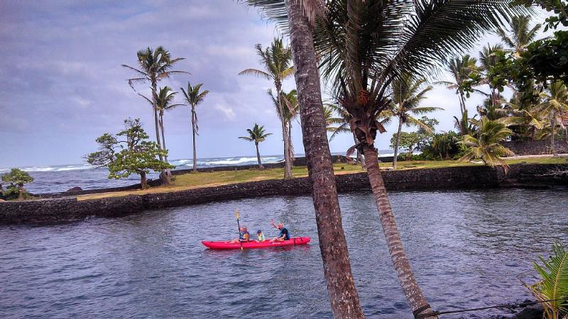 Swim, float, snorkel & kayak on calm cove & in Kapoho Bay (view from back yard) - Oceanfront Home: Snorkel, Kayak, Swim from yard - Pahoa - rentals