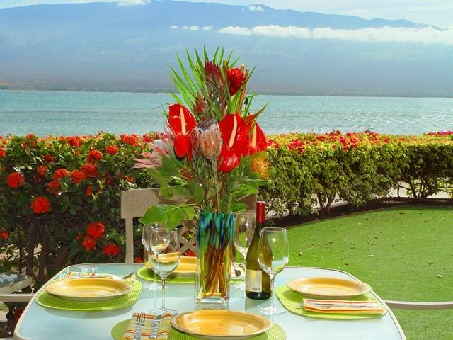 You just can't beat this view! No need to even leave home - Beautiful Oceanfront Condo with Fabulous View - Maalaea - rentals